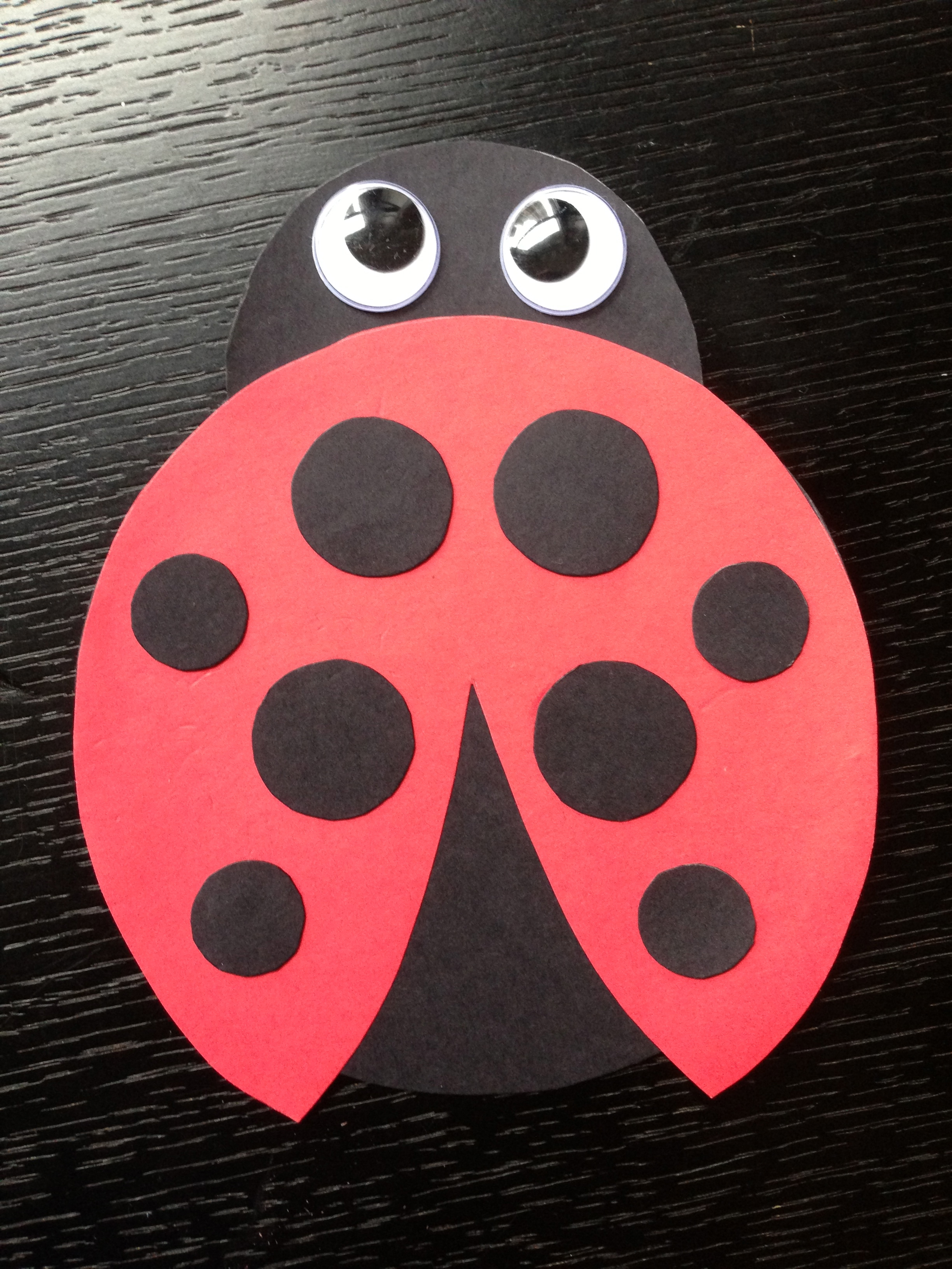 Diy ladybug invitation img3943 solutioingenieria Choice Image