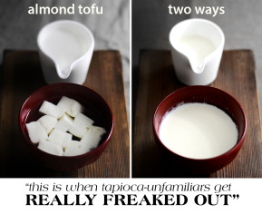 Guest Post: Almond Tofu 2 Ways by Lady AndPups