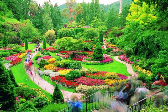 World s amazing gardens and flower fields for Amazing flower gardens