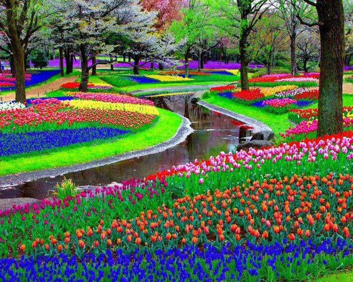 Worlds amazing gardens and flower fields garden 3 mightylinksfo