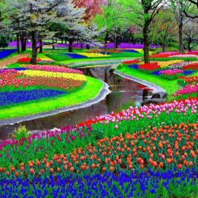 World's Amazing Gardens and FlowerFields