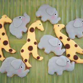 Safari Theme Birthday ForBoys